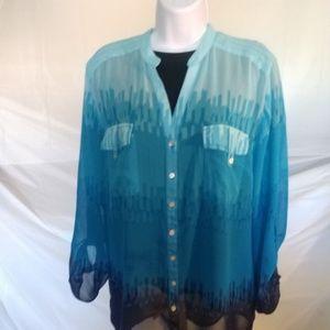 Styling Company Ladies Women's Sheer Blue Shirt Ad